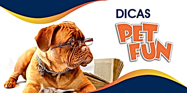 banner_dicas_pagina_mobile.png