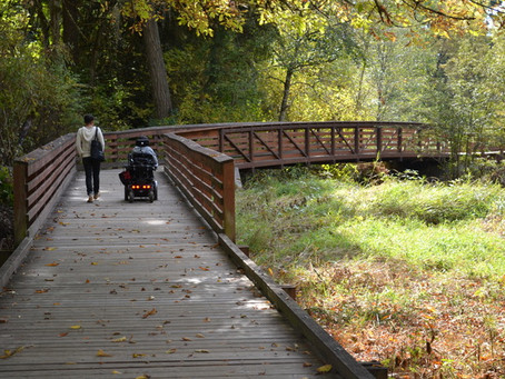 Trails Investments headed to the November Ballot in Portland Metro Region as part of Parks and Natur