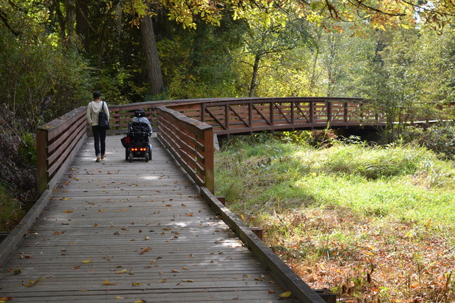 A person walking and person using a motorized chair hike on board walk through a natural area
