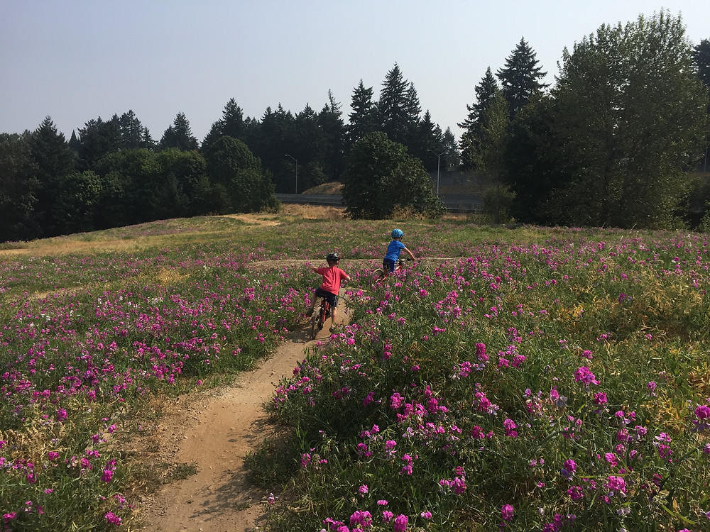 two kids biking down a dirt path with purple wildflowers and trees in the backgrounds