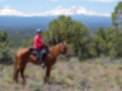 HorsewomanFull.jpg