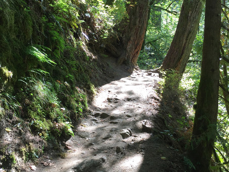 Federal Appropriations Requests for Trails