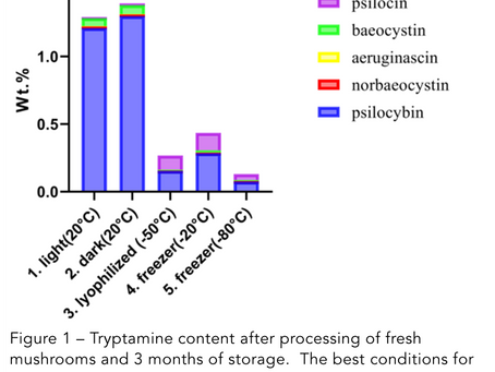 Stability of tryptamines in Psilocybe cubensis mushrooms