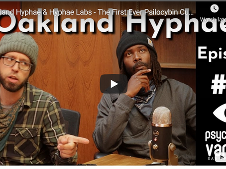 SFPS Psychedelic Variety #2 - Oakland Hyphae & Hyphae Labs - The First Ever Psilocybin Cup
