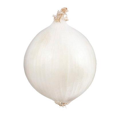 White Onion (1)