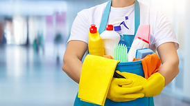 cleaning-products.png