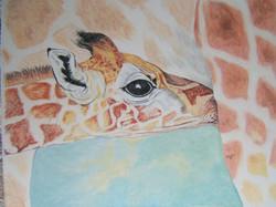 Maternité - Girafes