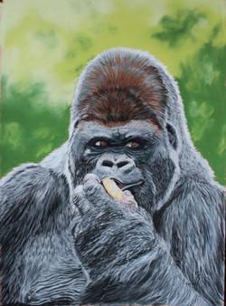 Gorille des plaines - pastel sec
