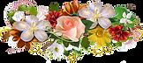 FlowerBed-04.png