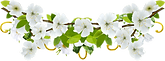 FlowerBed-01.png