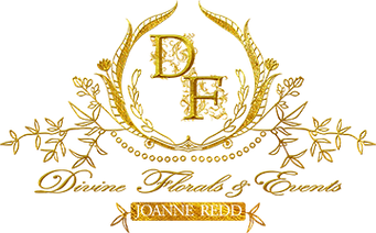 logo-small-transparent.png