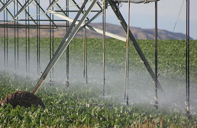 LESA_Irrigation