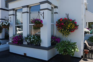 Redlands Hanging baskets.jpg