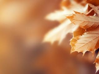 Equinoccio de otoño y ritual