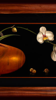 2Orchids to Be Nuts About 13' x 35' - ok koa wood