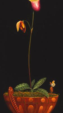 Capricciosa 23' x 9' - oil on koa