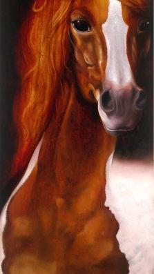 Grace 13' x 35' - oil on koa