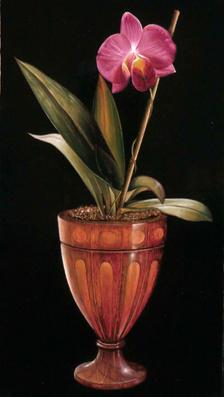 Maui Orchid 18' x 10' - oil on koa