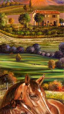 cavalli in Toscana