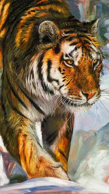 Tiger Amur - oil on copper