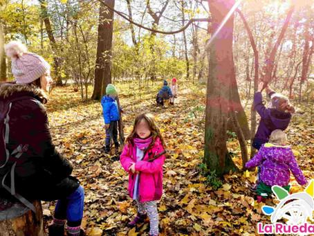 Biophilie und Kinder, Grüne Pädagogik im Naturkindergarten