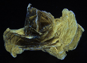 Polylithionite Rose from Mt. St. Hilaire