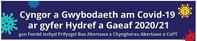 SBUHB leaflet welsh.png
