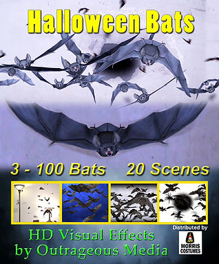 BatsUSB.jpg
