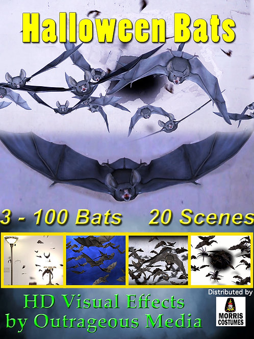 Halloween Bats USB drive HD Effects