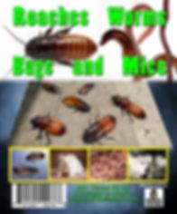 RoachesPrint.jpg