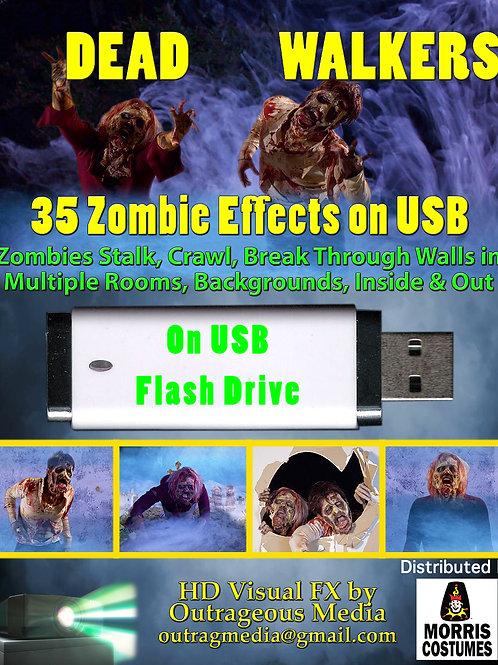 Dead Walkers Zombies on USB Flashdrive