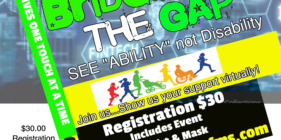 (Virtual) Bridging the Gap 2020 Individual Registration old