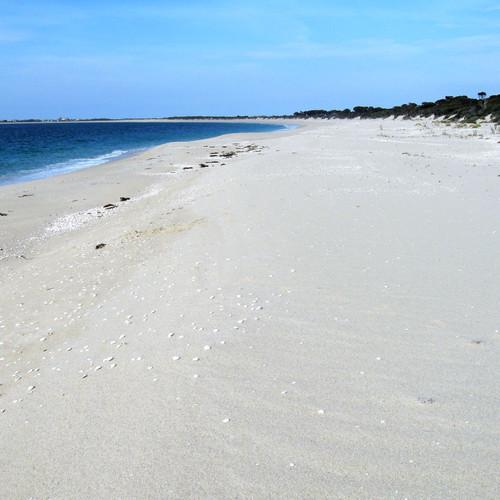 The beach side of Secret River