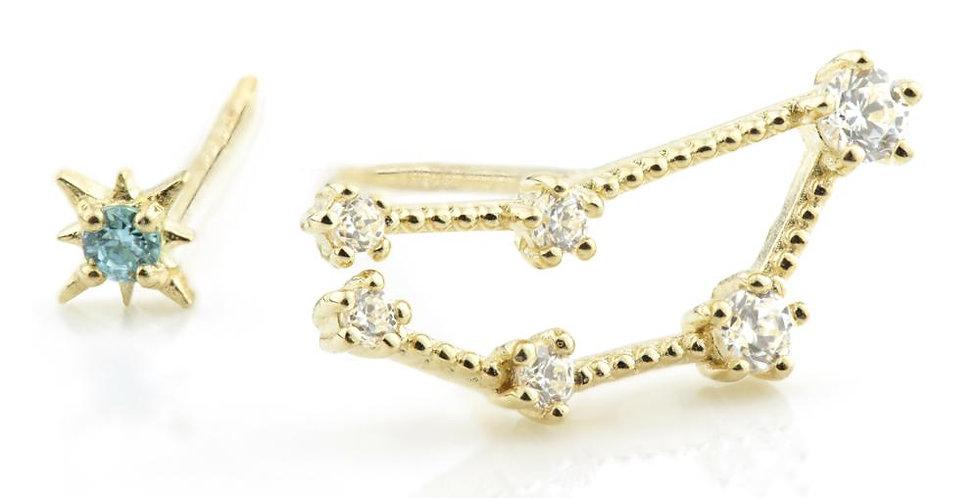 9ct Gold Gem Constellation Zodiac Earrings - Capricorn