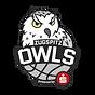 zugspitz_owls.png