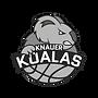 knauer_koalas.png