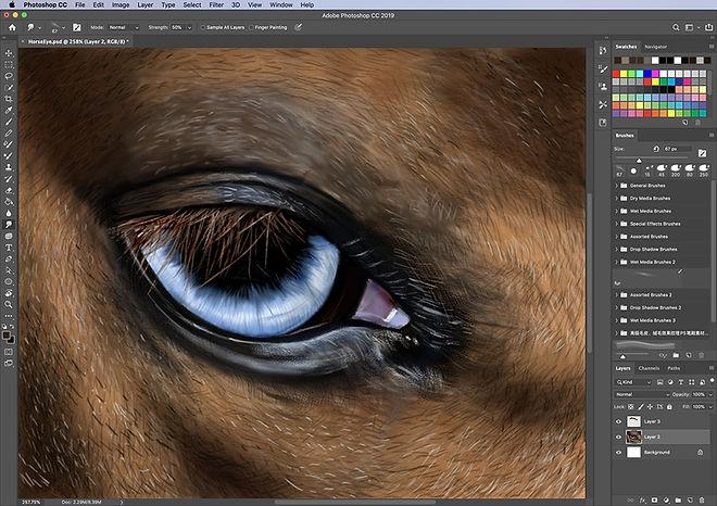 VSA-Photoshop-.jpg