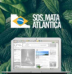 La Playa | SOS Mata Atlantica | Campanha Online