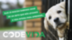 LaPlaya_Codevida05.png
