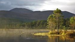 Sunrise over Loch Morlich