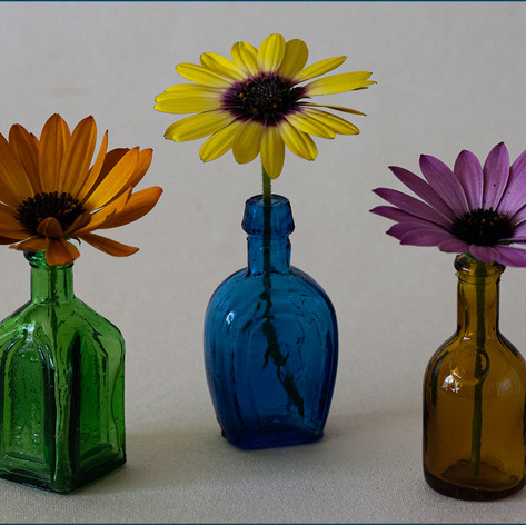 Three Bottles with Flowers