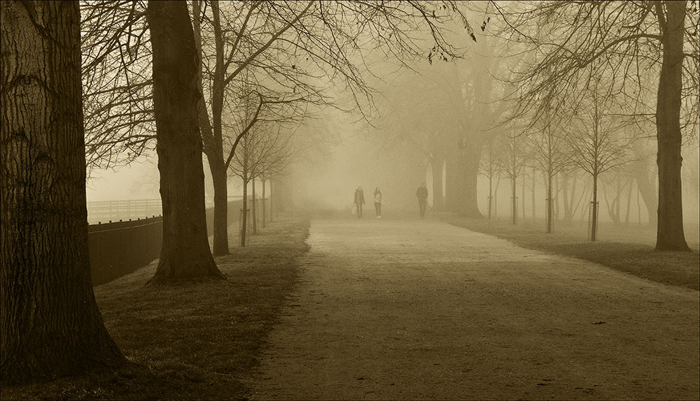 A Walk through the Mist