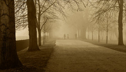 A Walk through the Mist