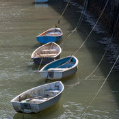 03 Harbour Boars R Greaves .jpg