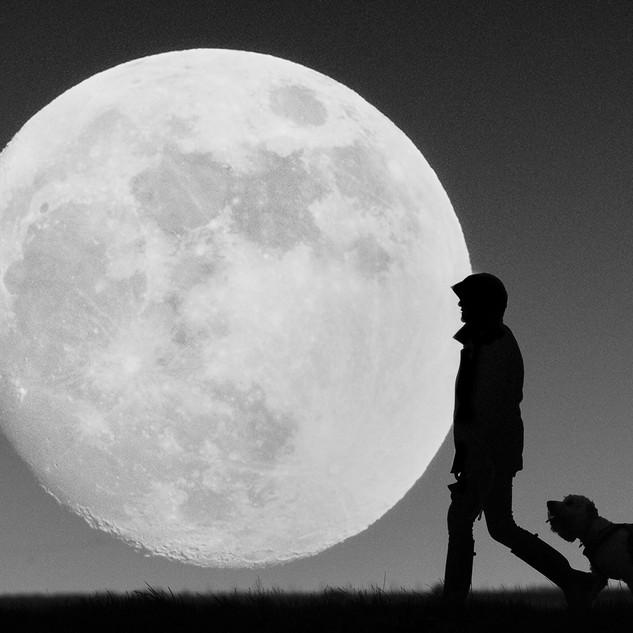 Moon Walkies