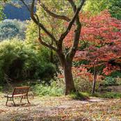 03_A Quiet seat RG.jpg