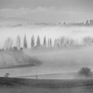 Mist Filled Valley