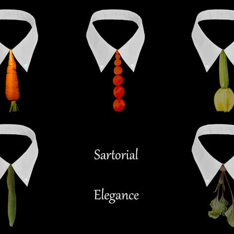 Sartorial Elegance