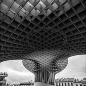 Seville Mushroom