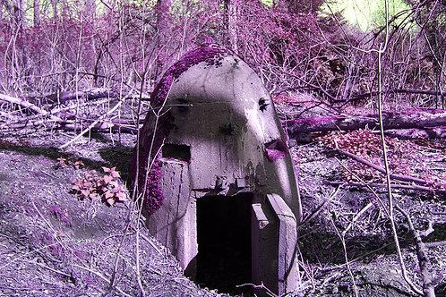 Pink Bunker / Kruppbahn
